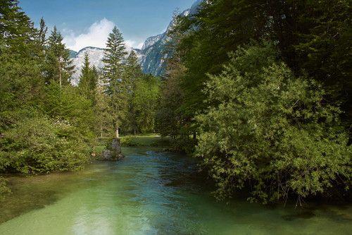 Triglav National Park, Slovenia Photo: Aleksandar Mazzora
