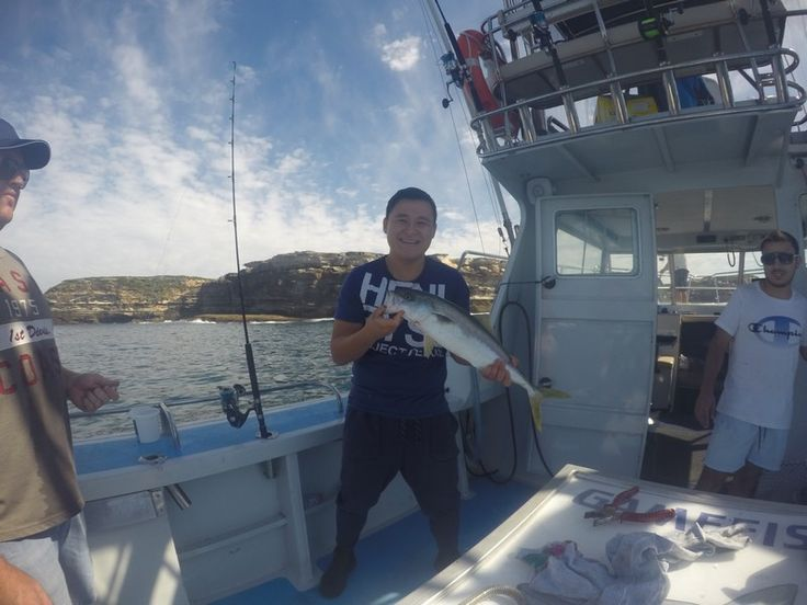 Kingfish DESTINY is for BBQ ! - http://sydneypremiumfishingcharters.com.au/kingfish-destiny-is-for-bbq/