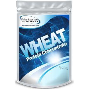 Wheat Protein Concentrate - pšeničný proteín