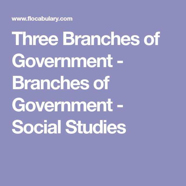Three Branches of Government - Branches of Government - Social Studies