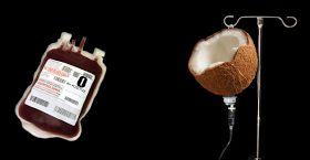 El agua de coco está libre de grasas y es una fuente ideal de electrolitos; los electrolitos regulan la acidez en el cuerpo, y ayudan al sistema nervioso a realizar bien sus funciones.   En la Segunda Guerra Mundial se practicaba una técnica de infusión vía intravenosa, usando el agua de coco en las personas que habían perdido demasiada sangre. Esto gracias su composición química, que es muy similar a la del plasma sanguíneo.