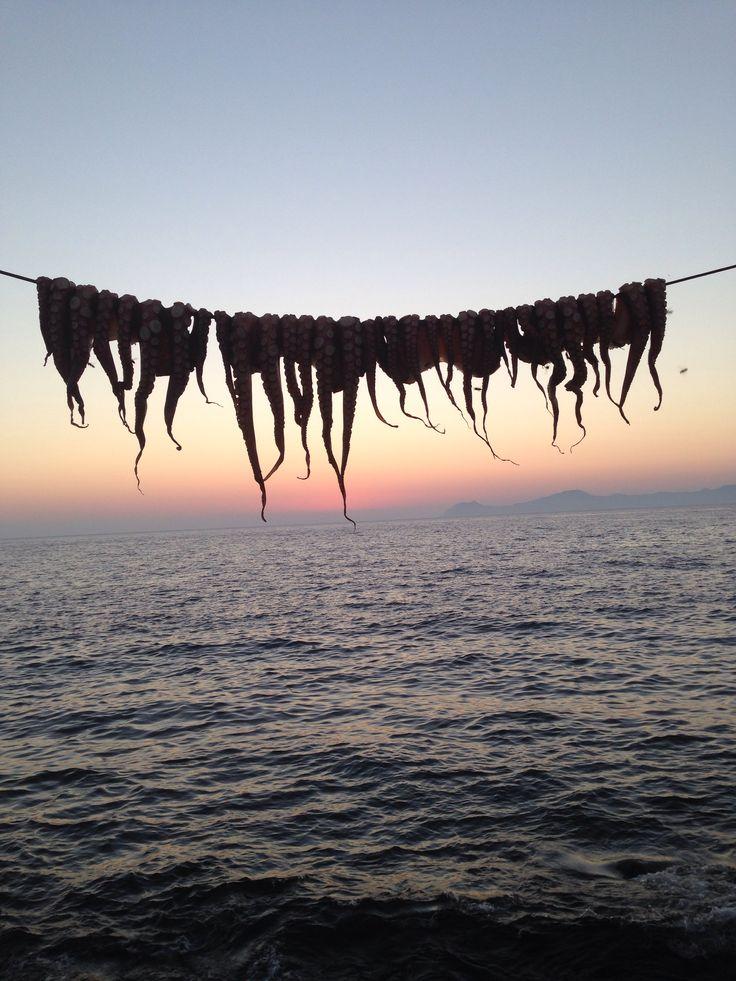 #nisyros #greece #octopus #sky #sunset #evening #view #amazing #taverns