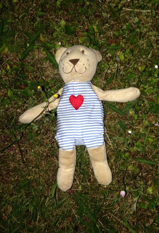 Found on 11 Jun. 2016 @ Canals, Brigantine Place, Cardiff. This little chap was found relaxing on the grass next to the canals in Butetown, near Brigantine Place, Cardiff, UK. Visit: https://whiteboomerang.com/lostteddy/msg/4pliiv (Posted by Matthew on 11 Jun. 2016)