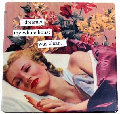 i dreamed my whole house was clean  funny humorous hilarious retro vintage art refrigerator fridge magnet gift for girlfriend mom anne taintor