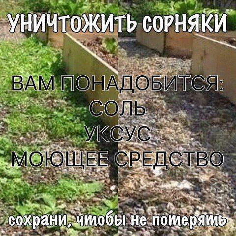 ЖЕНСКИЙ ОСТРОВОК