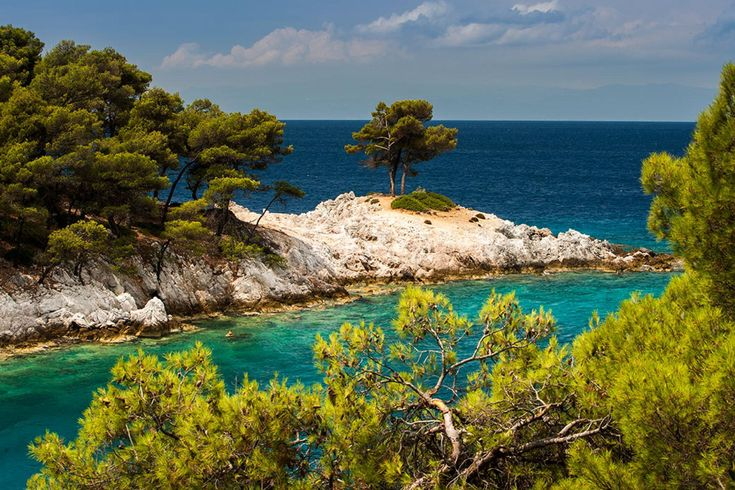 Skopelos.The green of the pines meets the emerald sea
