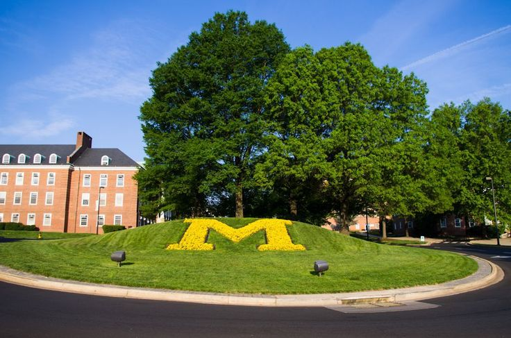 See photos of the University of Maryland, College Park and learn about the campus, see pictures of the the main campus of the University of Maryland.