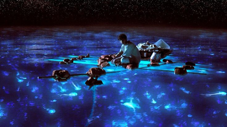 Hopkins, Belize's Bioluminescence Night Tour: Dip Your Hand into the Burnin' Wata! - San Pedro Scoop