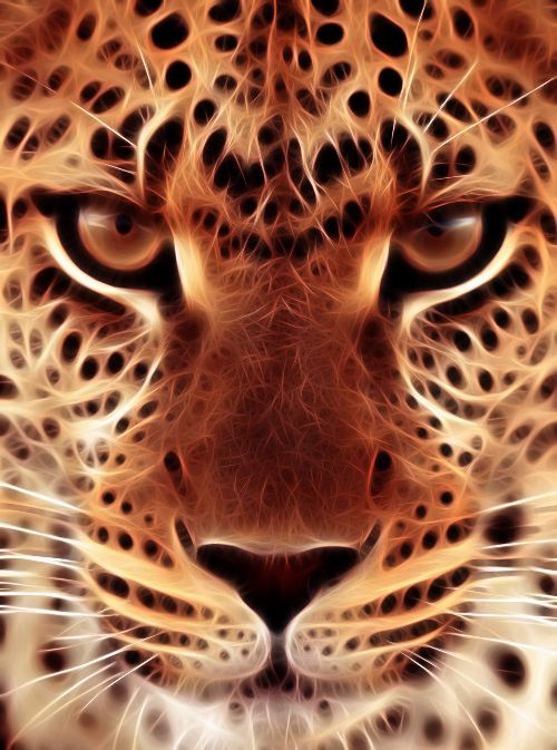 leopard face fractal IPhone wallpaper lock screen background.