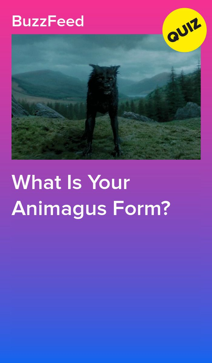 What Is Your Animagus Form Harry Potter Life Quiz Harry Potter Buzzfeed Harry Potter Quiz