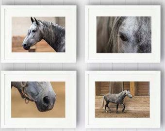 horse room decor for teens | ... room decor, sports art, girl room print, french decor horse paris