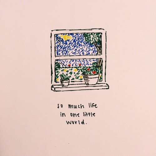 so much life in one little world.