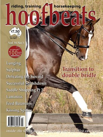 Download the series of 2 articles on Transitioning to the double bridle here: http://www.bitbankaustralia.com.au/articles/ #doublebridle #horsebits #dressage