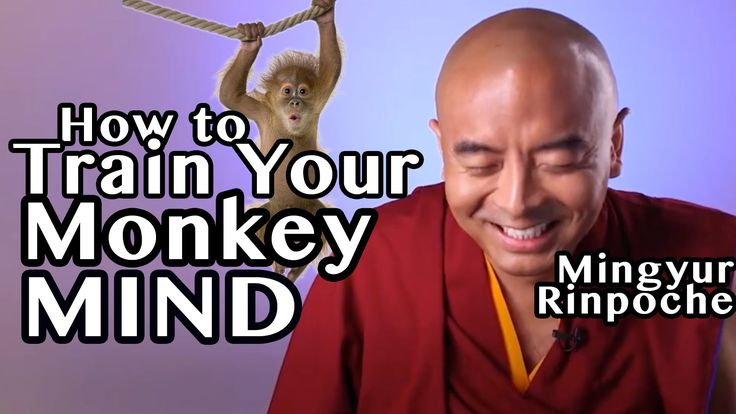 Tibetan Buddhist Master Reveals The Easiest Mindfulness Technique For Training Your Monkey Mind
