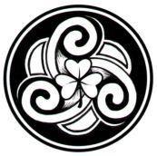 A Celtic Bard