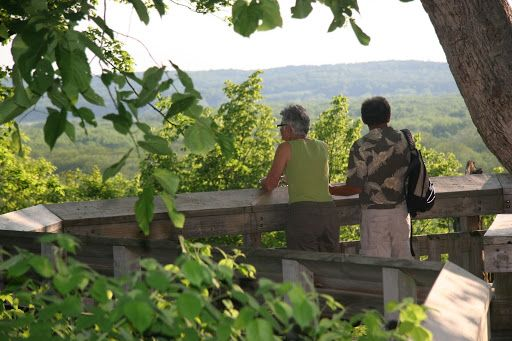 <p>Scattered picnic sites, picnic shelters and camping are features of this park. Hiking trails and a paved hiking and bicycling trail traverse the wooded park. A handicapped accessible scenic overlook offers the most expansive views of the Missouri River in the state.</p> <p>Because the park is located along the forested river corridor, it offers excellent bird watching, especially during spring and fall migrations.</p> <p>There are secluded picnic are...