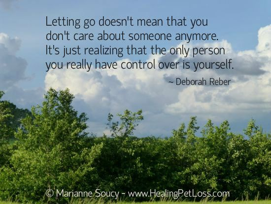 letting go quote healing pet loss walking through the
