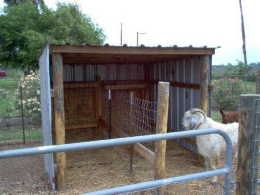 25 Best Ideas About Goat Shelter