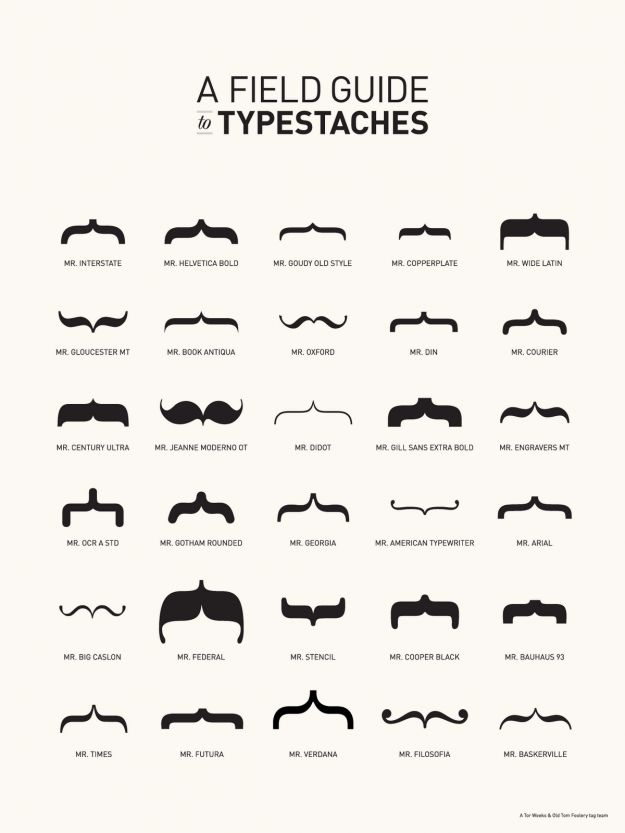 field guide to typestaches - info graphic