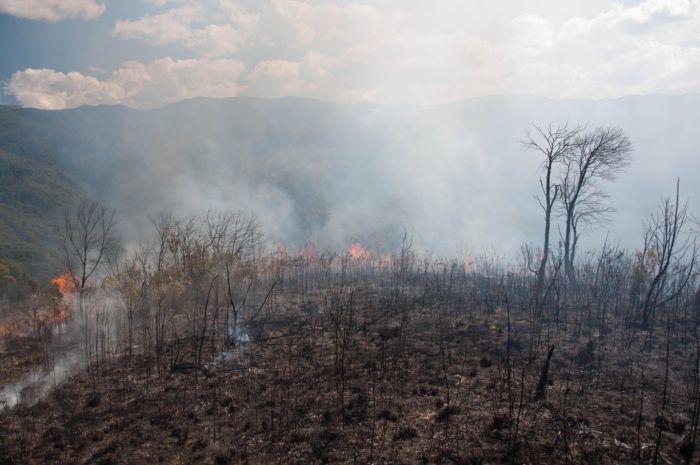 Pior da história: incêndio na Chapada dos Veadeiros começa a ser controlado