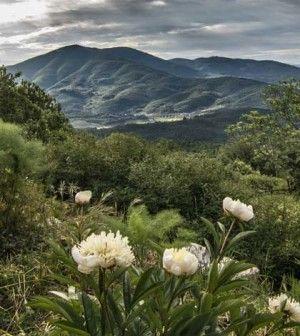 Monte Morello. Storie e bellezze della sua gente