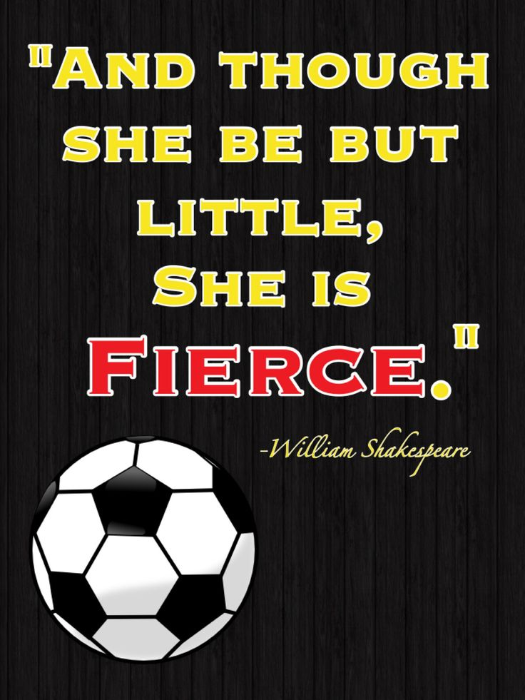my favorite soccer quote