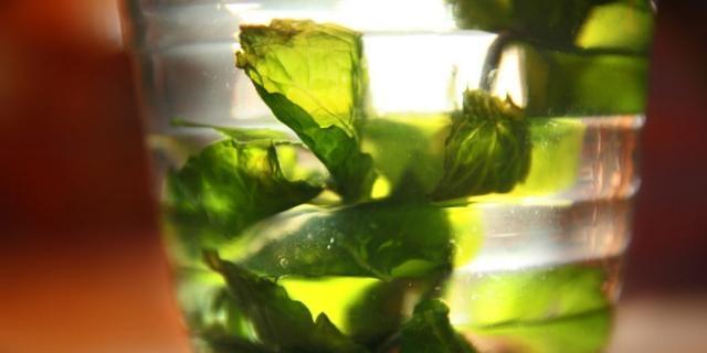 OPPSKRIFT PÅ MYNTETE: Myntete er herlig å varme seg på. (Mint tea)