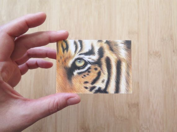 Miniature drawing  ACEO  Original drawing of a by Polychromos