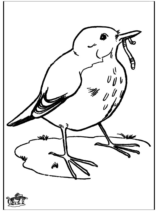 blackbird  birds  disney drawing tutorial love bears