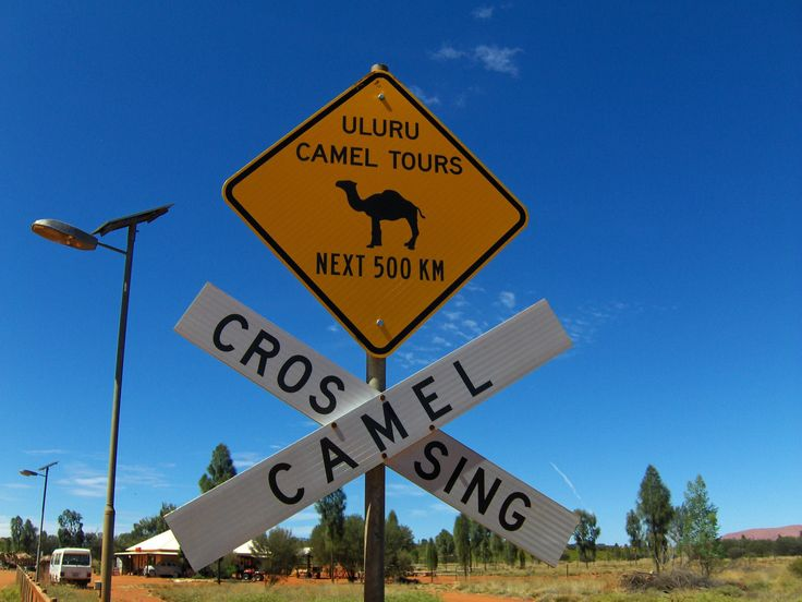 Australien. Australia. Nature. Travling. Travel. Memories. Adventuredk. Sign. Crossing Camel