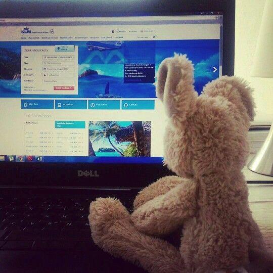 Ook zo'n zin in vakantie??!! #muis #fotografie #vakantie #vliegen #tropischeiland