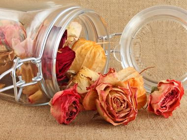 How to dry flowers: With silica gel