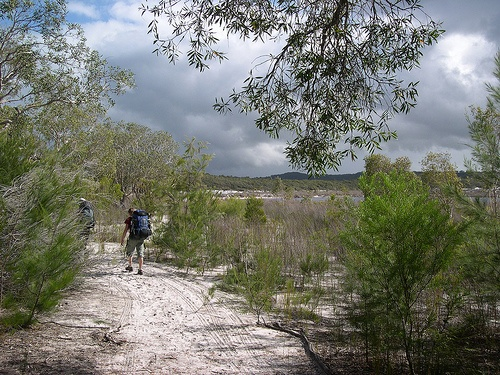 The Fraser Island Great Walk