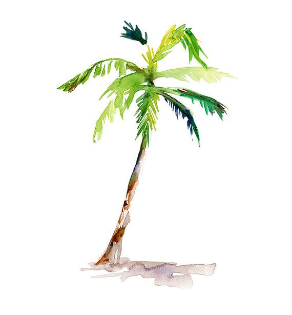 Original Palmtree Watercolor Painting. Botanical by Zendrawing
