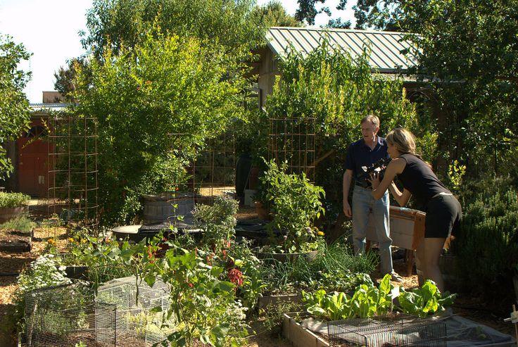 A permacultura se baseia no planejamento de sistemas em escala humana criados em total harmonia com a natureza.