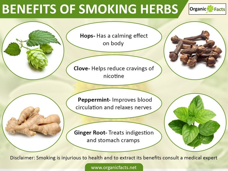 Health benefits of smoking vary amongst different varieties of herbs. Smoking is typically the inhalation of smoke obtained while burning cured tobacco leaves. Though cigarette smoking is injurious to health, smoking herbs is thought to be beneficial to the overall health and vitality. Lobelia, commonly known as the Indian tobacco, is very effective in quitting the smoking habit and is very much like the real nicotine sans its addictive properties.