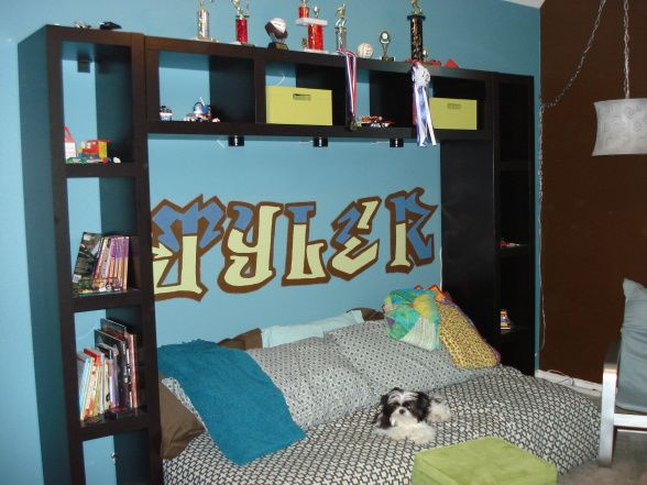 Skateboard Bedroom 119 best tylor room images on pinterest | skateboard shelves