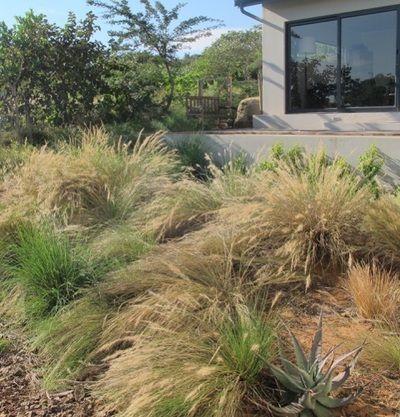 Natural Gardens | Emmarie Otto | Garden Brettenwood