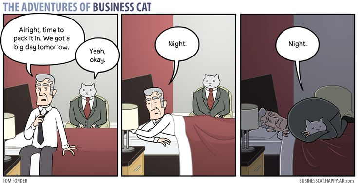 Boundaries | The Adventures of Business Cat