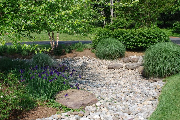 Best 25 rain garden ideas on pinterest pond rocks rock for Residential stormwater drainage solutions