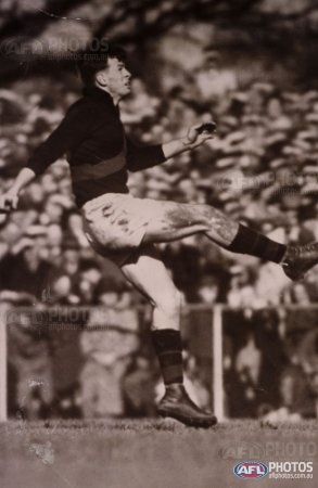 Essendon, John Coleman Historical image of AFL Goal Kicking Legend, who played 98 games for Essendon and kicked 537 goals.