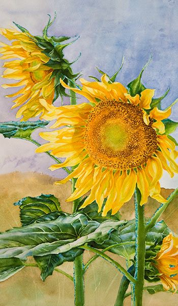 Watercolor demonstration of sunflowers by artist Lisa Hill Step 5