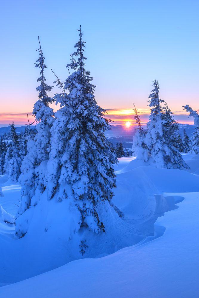 Finland's winter landscape
