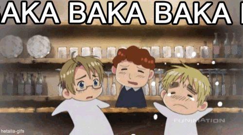 lol baka means idiot.