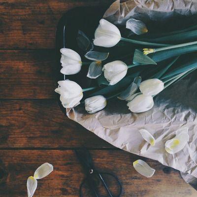 flowers, tulips, and beautiful kép