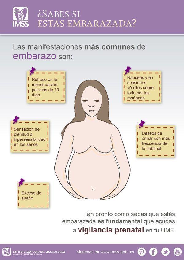 Las mejores vitaminas prenatales para las mujeres - Top