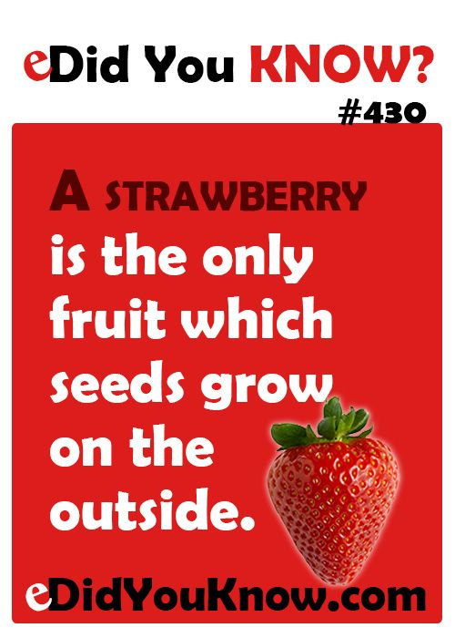 11 best did you know fun food facts images on pinterest for Interesting facts about strawberries