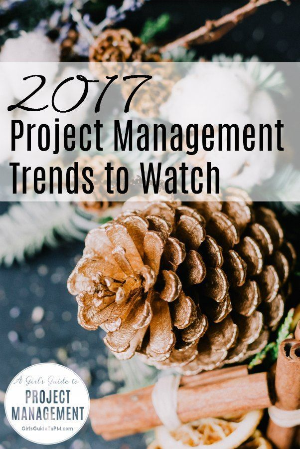 2017 Project Management Trends