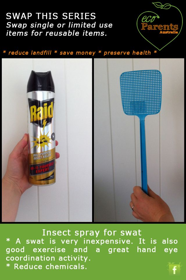 You could rely on spiders to keep your flies under control, or use a simple fly swat.