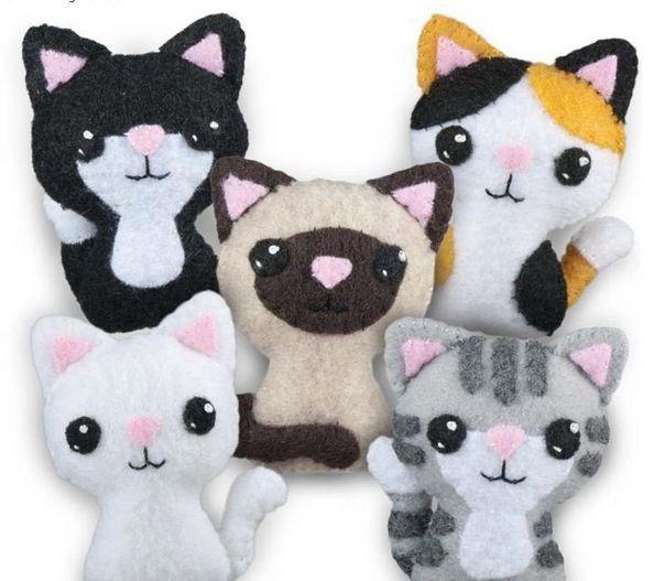 gattini adorabili